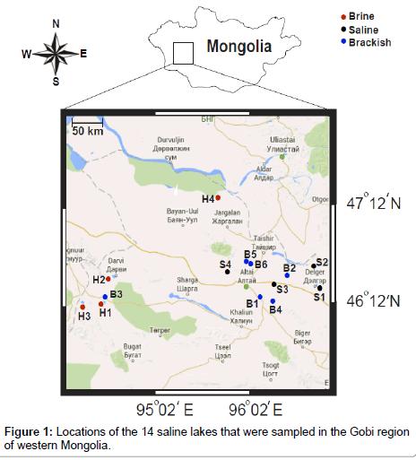 earth-science-climatic-change-Gobi-region-western