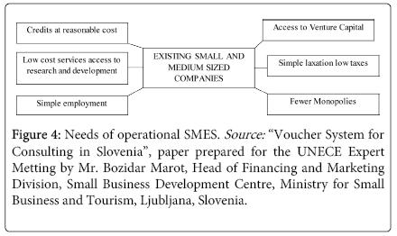 economics-and-management-Needs-operational-SMES