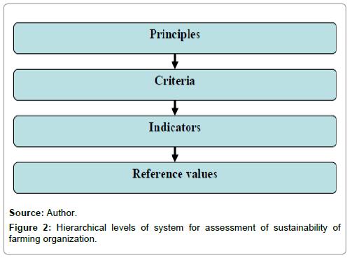 economics-and-management-sciences-hierarchical-levels-assessment