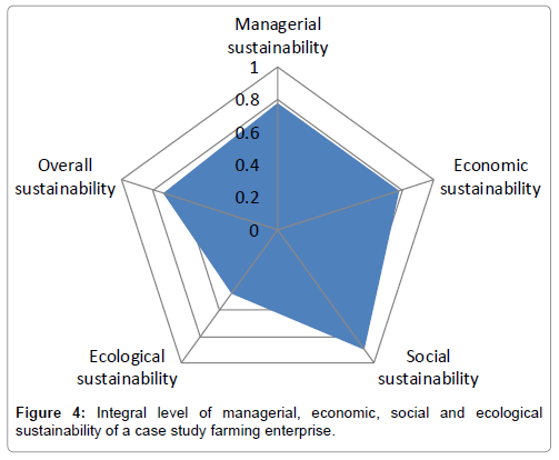 economics-and-management-sciences-integral-level-managerial