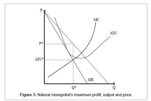 economics-and-management-sciences-monopolist