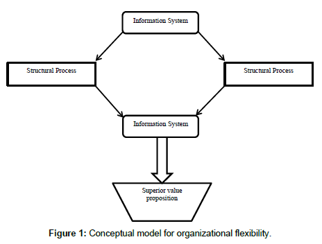 implications of organizational structure for international Examining the implications of organizational structure marketing and international business examining the implications of organizational structure changes.
