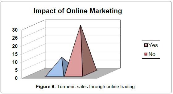 economics-management-sciences-turmeric-sales-online
