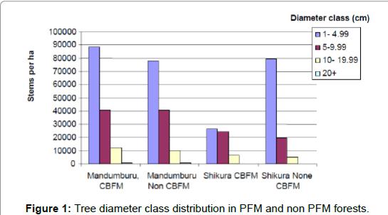 ecosystem-ecography-Tree-diameter-class