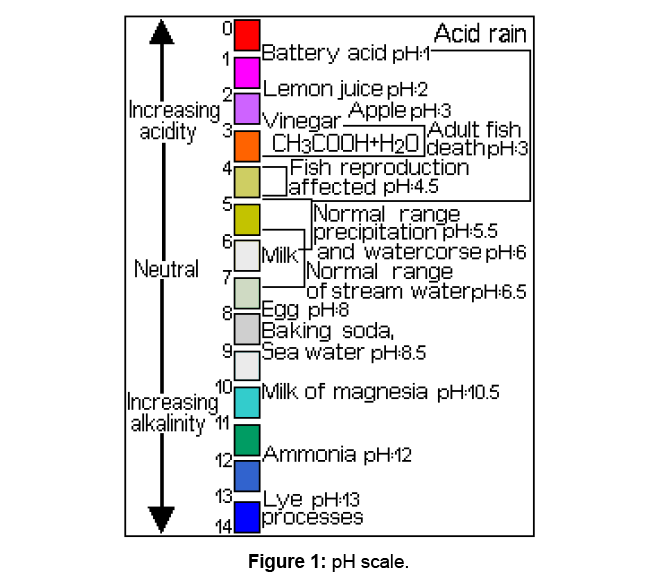 acid rain students site ph scale