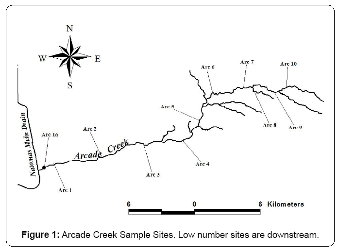 ecosystem-ecography-arcade-creek-sample