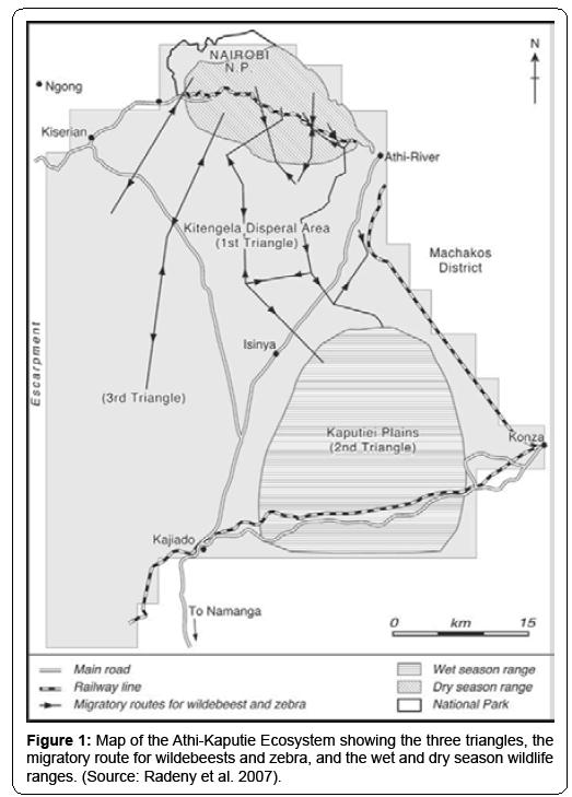 ecosystem-ecography-athi-kaputie-ecosystem