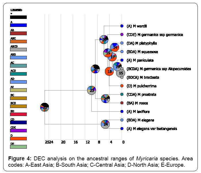 ecosystem-ecography-dec-analysis