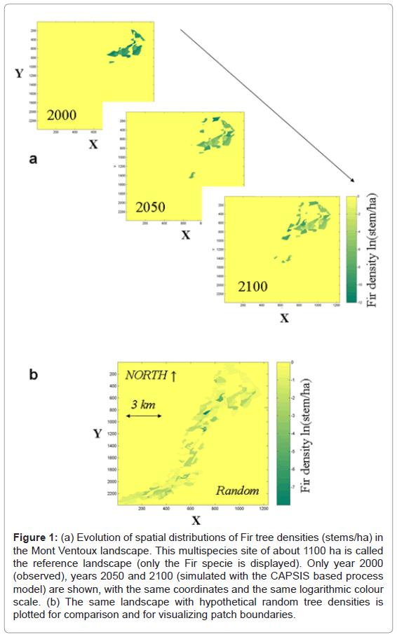 ecosystem-ecography-evolution-spatial