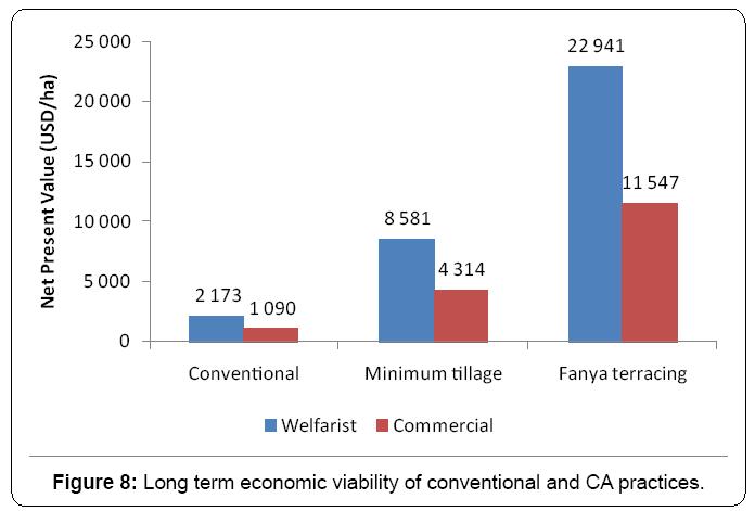 ecosystem-ecography-long-term-economic-viability