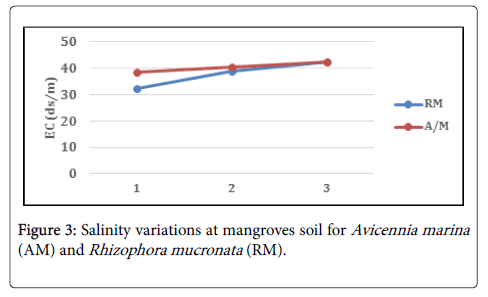 ecosystem-ecography-mangroves