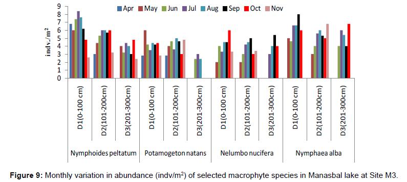 ecosystem-ecography-monthly-abundance-site-m3