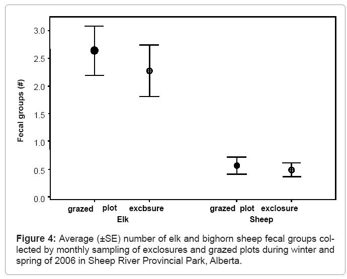 ecosystem-ecography-number-elk-bighorn