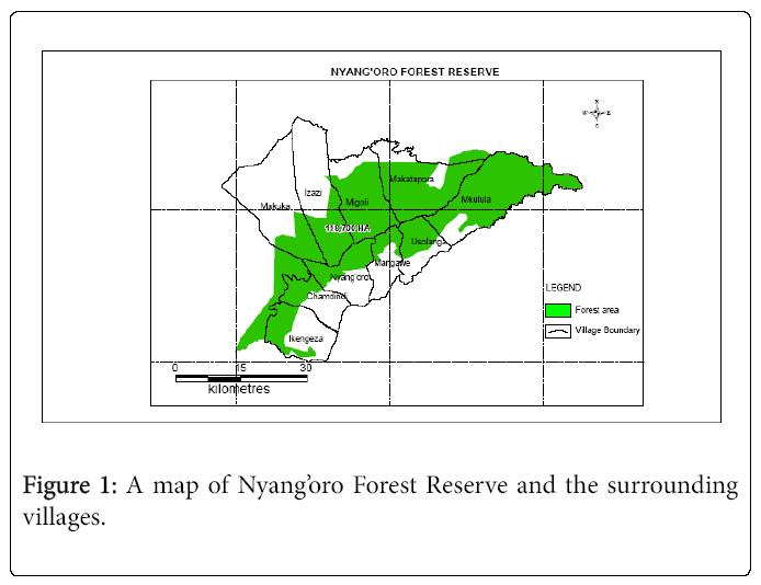 ecosystem-ecography-nyangoro-forest-reserve