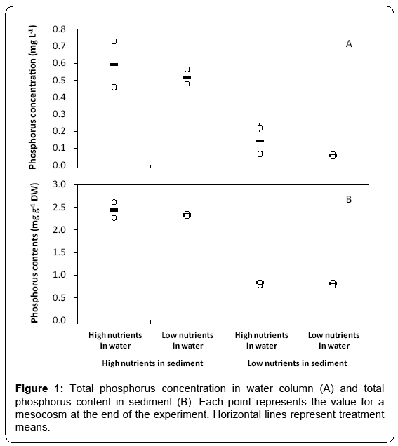 ecosystem-ecography-phosphorus-concentration