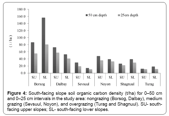 ecosystem-ecography-south-facing-slopes-soil