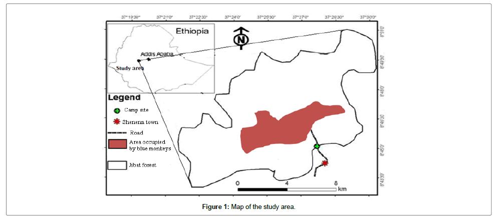 ecosystem-ecography-study