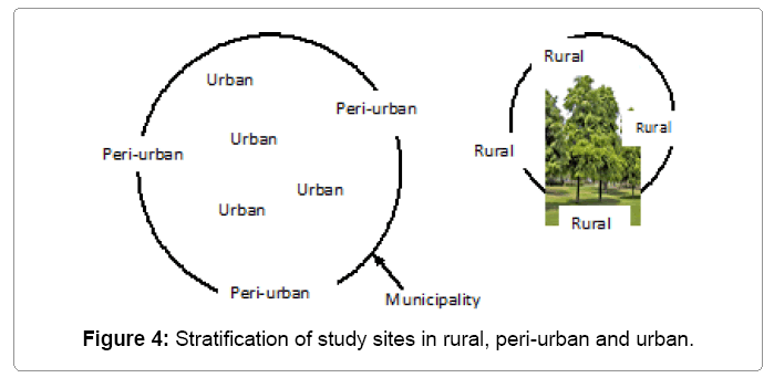 ecosystem-ecography-study-sites-rural