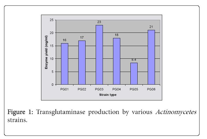 ecosystem-ecography-transglutaminase-production
