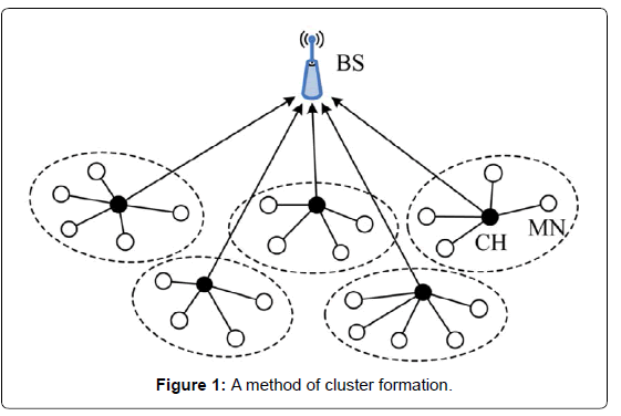electrical-electronic-systems-cluster
