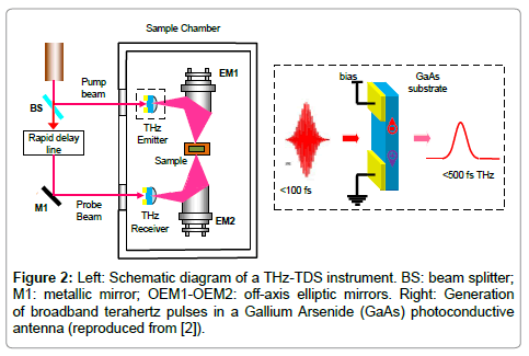Terahertz Time-Domain Spectroscopy and Imaging | OMICS International
