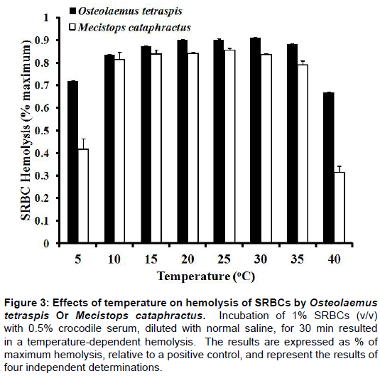 entomology-ornithology-herpetology-Mecistops-cataphractus