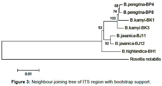 entomology-ornithology-herpetology-bootstrap-support