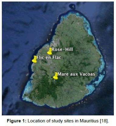 entomology-ornithology-herpetology-study-sites-Mauritius