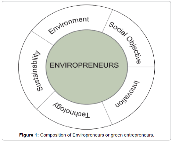 entrepreneurship-organization-management-composition-enviropreneurs