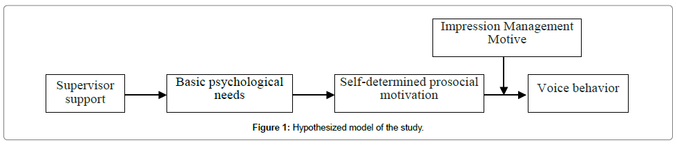 entrepreneurship-organization-management-model