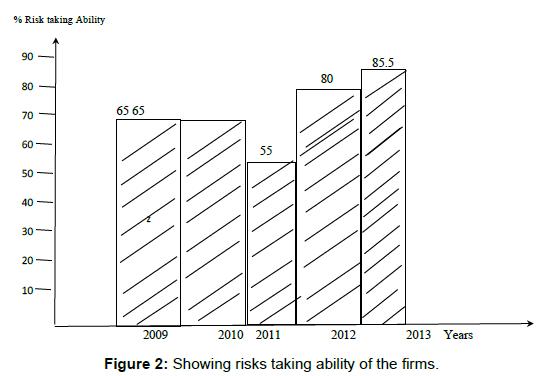 entrepreneurship-organization-management-risks-ability-firms