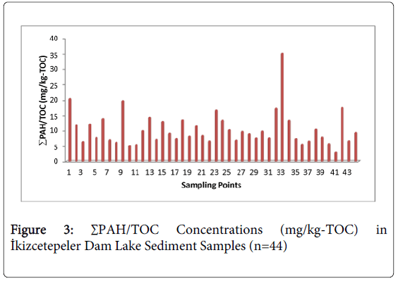 environmental-analytical-chemistry-Concentrations-Dam-Sediment