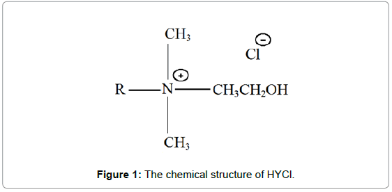environmental-analytical-chemistry-chemical-structure-HYCl