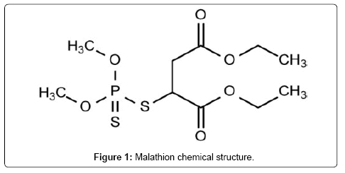 environmental-analytical-toxicology-Malathion-chemical-structure