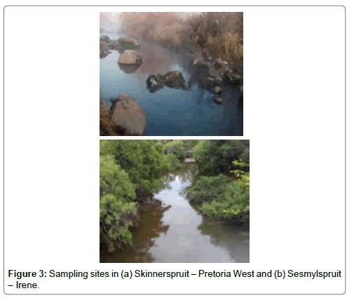 environmental-analytical-toxicology-Skinnerspruit-Pretoria-West