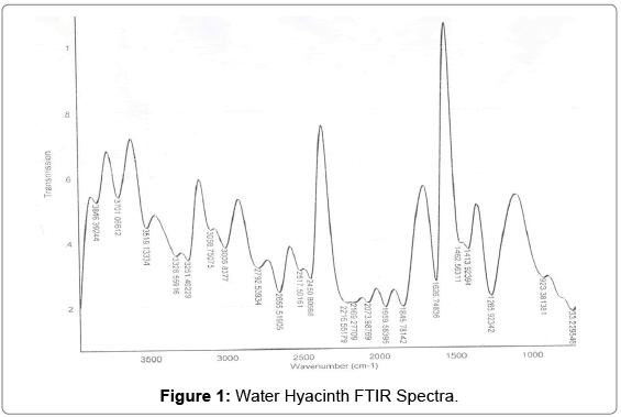 environmental-analytical-toxicology-Water-Hyacinth