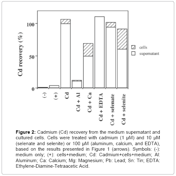 environmental-analytical-toxicology-medium-supernatant