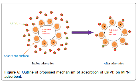 environmental-analytical-toxicology-proposed-mechanism