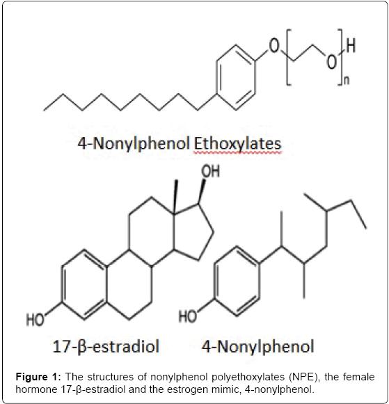 environmental-analytical-toxicology-structures-nonylphenol-polyethoxylates