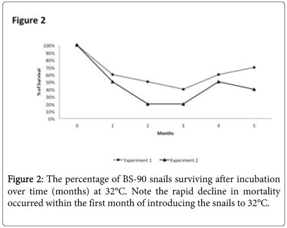 epidemiology-BS-90-snails-surviving