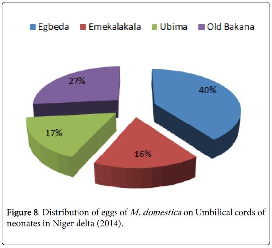 epidemiology-Distribution-eggs