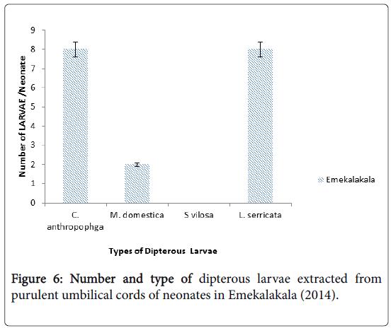 epidemiology-Emekalakala