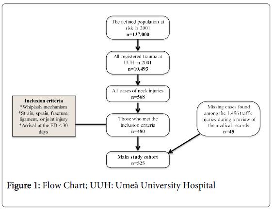 epidemiology-Flow-Chart