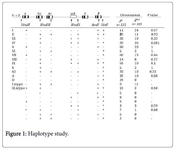epidemiology-Haplotype-study