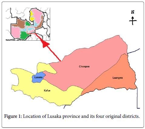 epidemiology-Lusaka-province