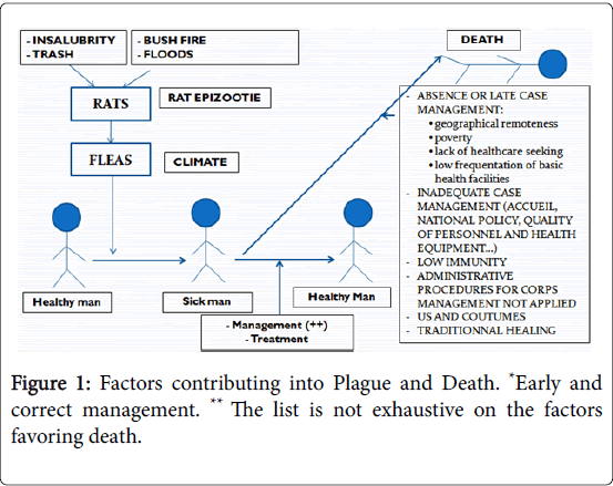 epidemiology-favoring-death