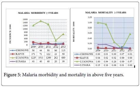 epidemiology-morbidity