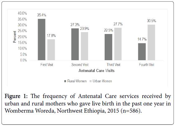 epidemiology-urban-rural-mothers