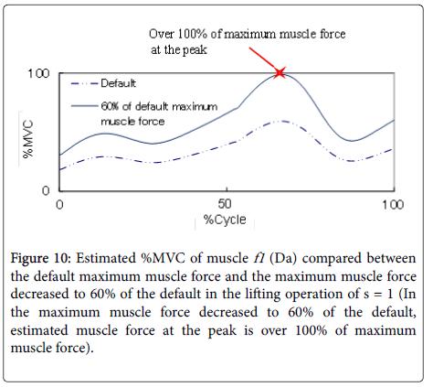 ergonomics-maximum-muscle-force