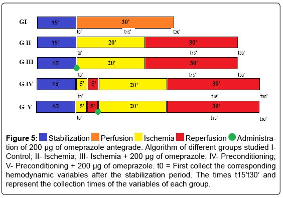 experimental-cardiology-omeprazole-antegrade